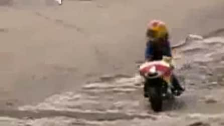 La scimmietta va in moto, ma poi succede qualcosa di inaspettato