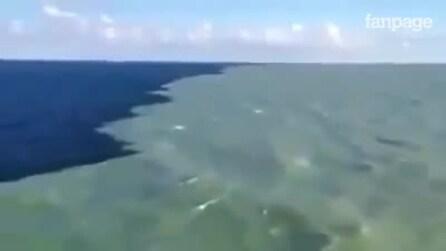 O Golfo de Alaska onde dois mares se encontram, mas não se misturam