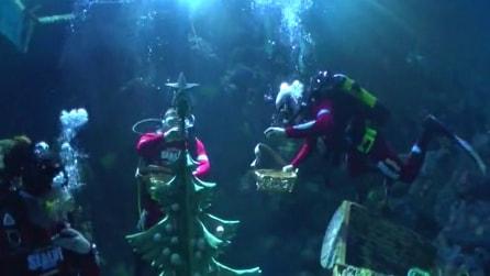 Gardaland, l'invasione dei Babbo Natale subacquei ed acrobatici