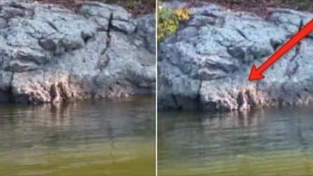 Ele está na canoa e vê algo subindo para fora da água: realmente assustador