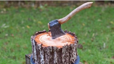 Sembra un tronco con un'ascia ma non lo è: ecco di cosa si tratta