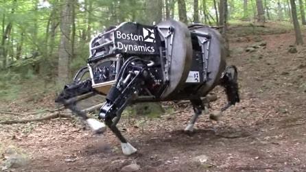 Il robot fa troppo rumore, l'esercito americano rinuncia al progetto per le missioni di guerra