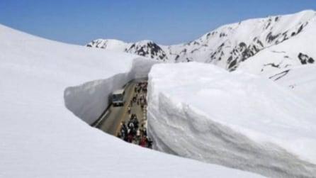 La muraglia bianco, il tunnel di neve che attira milioni di turisti