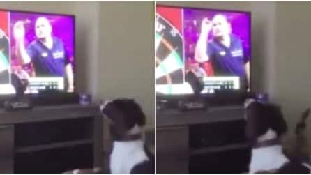 Dalla tv vede il lancio delle freccette: quello che fa il cane è da non credere