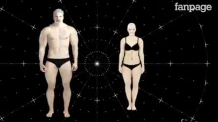 Come sarà l'uomo tra 3000 anni? Una trasformazione sorprendente