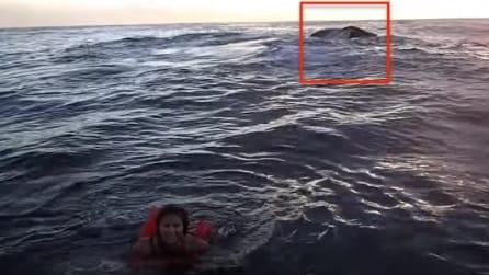 Si tuffa in acqua e quello che accade poco dopo è un vero spettacolo