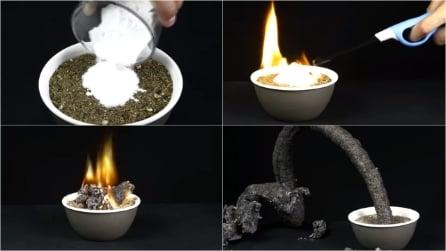 Brucia zucchero e bicarbonato: la reazione chimica lascia senza parole