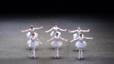 Sembrano delle bambole di porcellana: ma il loro balletto è da brividi
