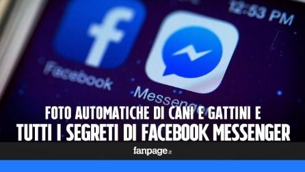 Facebook Messenger: condividere automaticamente foto di cani e gattini e tutti i segreti dell'app