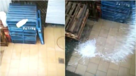 """La bottiglia di soda precipita sul pavimento e si trasforma in un """"missile"""""""
