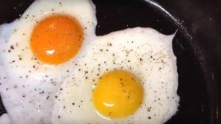 """Il modo per capire se un uovo proviene da galline allevate """"a terra"""""""