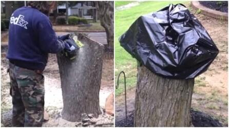 Taglia il tronco di un albero e ci mette una busta nera sopra per un motivo preciso