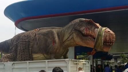 Il gigantesco T-Rex sembra proprio vero e il bimbo piange per la paura