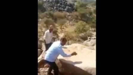 Sembrano delle normali rocce ma appena le toccano ecco cosa accade