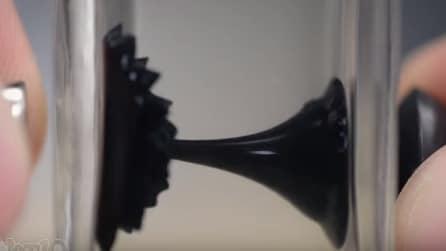 Il liquido attirato dalla calamita che si muove in una bottiglia di vetro