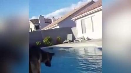 La palla cade in acqua ma lui ha paura di tuffarsi: quello che escogita per recuperarla è geniale