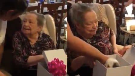 È devastata dalla perdita del suo cane: le figlie le regalano una gioia infinita