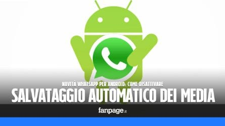 WhatsApp per Android: a breve potrai decidere di non salvare le foto e i video nel rullino