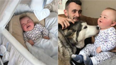 La piccola non smette di piangere: papà trova la soluzione per calmarla