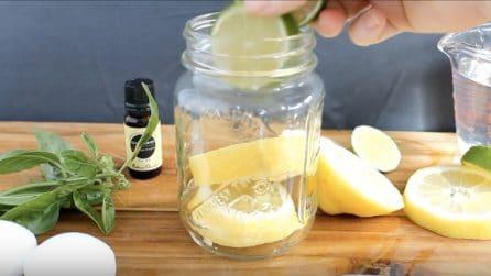 Mette delle fette di limone in un barattolo: il rimedio naturale per tenere lontane le zanzare