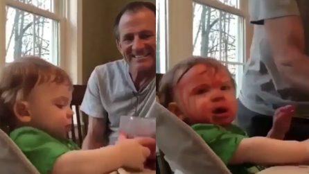 Il piccolo combina un disastro: la sua espressione è esilarante