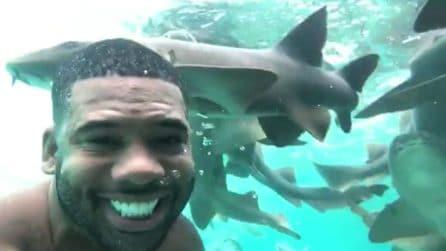 Si immerge in mezzo agli squali: le immagini mettono i brividi