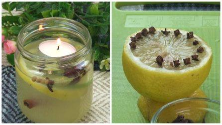 Deodorante e repellente naturale: come prepararli in pochi e semplici passaggi