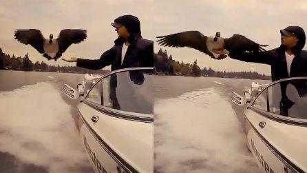 Da quando l'ha salvata lei vola sempre accanto alla sua barca. La loro storia è un esempio d'amore