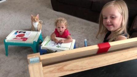 La sorella maggiore insegna l'alfabeto a due studenti speciali: le immagini sono esilaranti