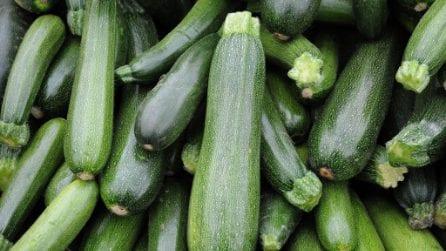 Come conservare le zucchine più a lungo