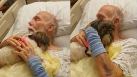 Dimostra tutto il suo affetto al padrone malato: immagini che arrivano dritte al cuore