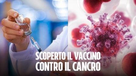Scoperto il vaccino contro il cancro: efficace sui topi, presto potrebbe essere testato sugli umani