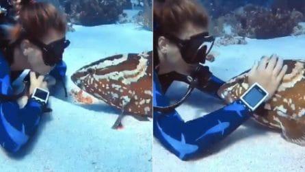 Il pesce ama le coccole e si rilassa: l'incontro che non ti aspetti