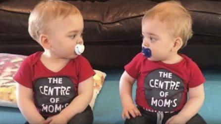 I due gemelli si sfidano con lo sguardo: mamma riprende il loro litigio