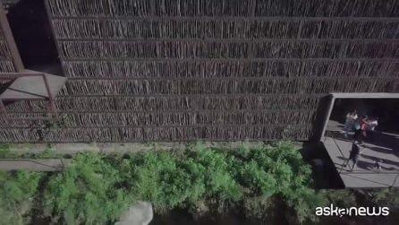 Cina, la magica biblioteca in legno e vetro immersa nella natura