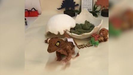 """Il piccolo """"dinosauro"""" scappa dalla sessione di foto: la scena è tenerissima"""