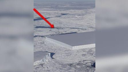 Assurdo iceberg avvistato dalla NASA: il blocco di ghiaccio è geometricamente perfetto