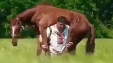 Il suo cavallo è in difficoltà: quest'uomo è pronto a tutto pur di salvarlo