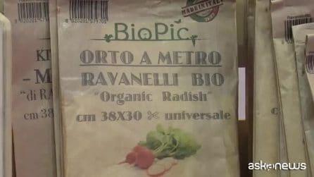 L'orto da tavolo Made in Italy che consuma meno di 1 euro al mese