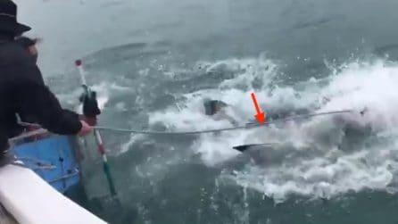 """Un enorme squalo cattura l'esca: lo """"scontro"""" mette i brividi"""