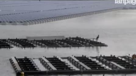 Giappone, ultimato l'impianto solare galleggiante più grande al mondo