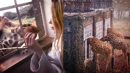Il paradiso terrestre dove le giraffe fanno colazione con gli esseri umani