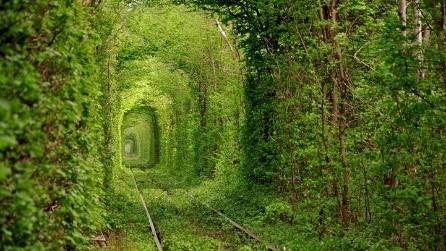 Il tunnel dell'amore che si trova in Ucraina: viaggio nel posto più romantico