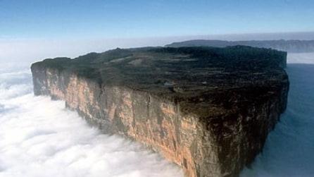 Il Monte Roraima con piante e animali che sembrano venuti da un altro pianeta