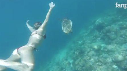 Federica Pellegrini in vacanza alle Maldive: nuotata da sogno insieme a una tartaruga