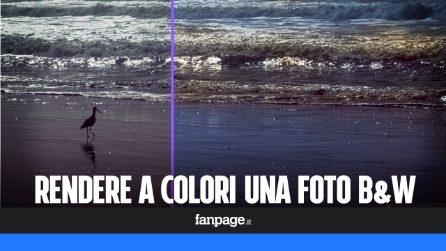 Rendere a colori una foto in bianco e nero