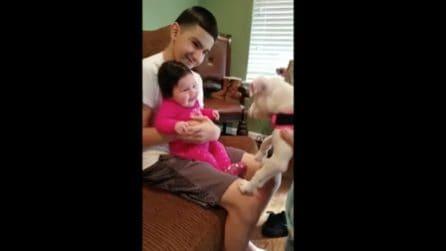 """Dolce incontro tra """"cuccioli"""": la bimba di 3 mesi e il cagnolino si vedono per la prima volta"""
