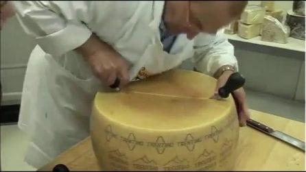 """Il """"samurai"""" del formaggio: taglia in due parti il Grana in una sola mossa"""
