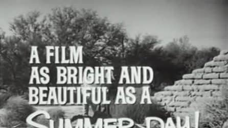 I gigli del campo: il trailer originale