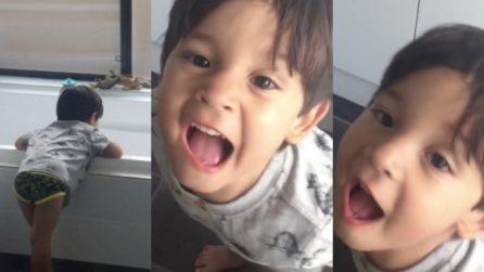 Il bimbo non smette di ruggire: ha 3 anni e crede di essere un dinosauro